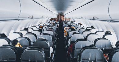 US-Regierung erlaubt Pferde im Flugzeug