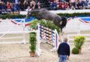 Neue Leitlinien: Deutsches Körsystem in der Tierschutz-Kritik